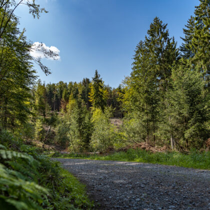Spaziergang: Glüder - Sengbachtal' - Hintergrundbild